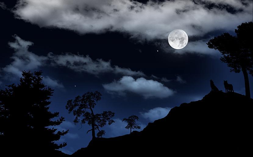 Autors: zobusāpes Mežā naktīs vilki gaudo