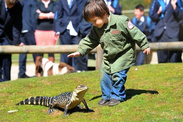 quotMūsu izbrīnam nebija... Autors: R1DZ1N1EKS Pats jaunākais čūsku savaldītājs.