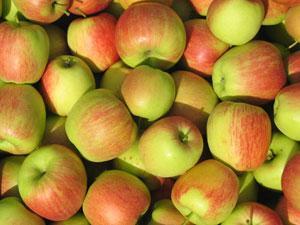 Ēd vairāk augļus nevis... Autors: janismilannu Kā viegli nomest riepu.