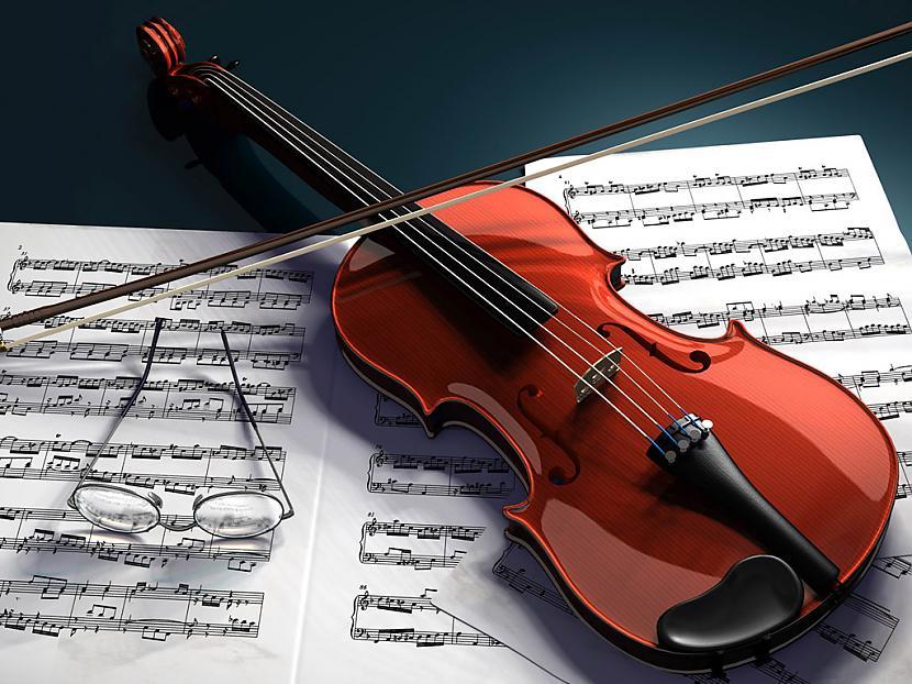 Vijole ir veidota no aptuveni... Autors: Kaprālis Interesanti fakti