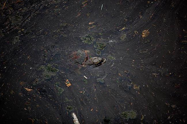 Viss ko es varu teikt par... Autors: msi11 Pasaulē piesārņotākā upe.