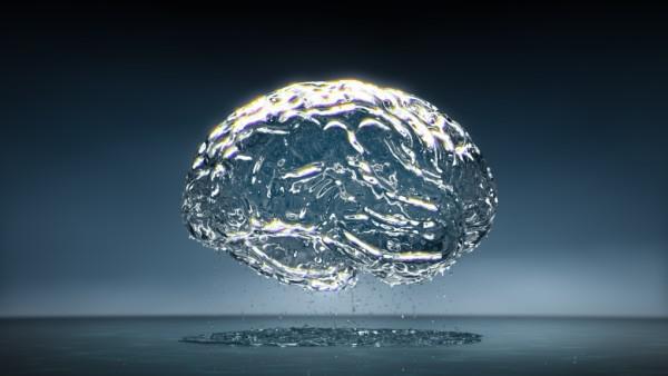 Smadzenes sastāv aptuveni no... Autors: Aurelius Kā rodas «bezfilma» un citi fakti par smadzenēm