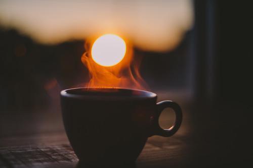 Autors: Fosilija morning