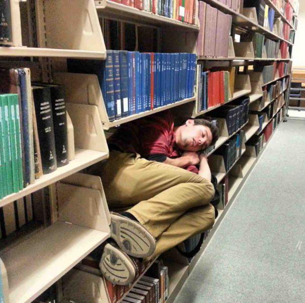 Bibliotēkas plauktā Autors: im mad cuz u bad Kur vislabāk aizmigt?