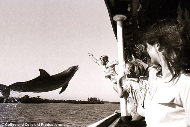 Autors: BLACK HEART Vīrietim veselu gadu romāns ar delfīnu