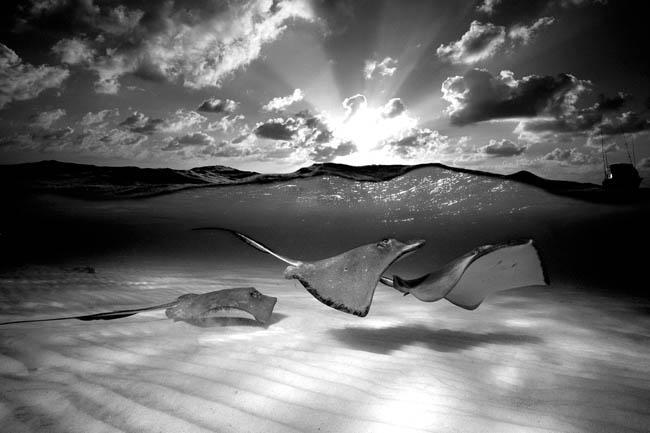 Autors: ieva5 Spēles ar ūdeni