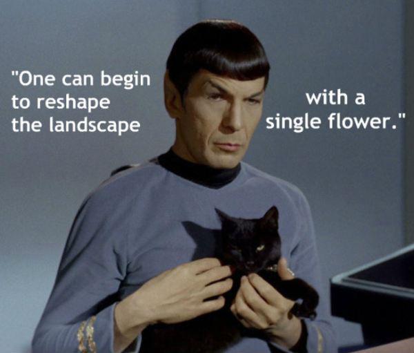 Viens var sākt pārveidot... Autors: chakijs16 10 Spoka (Spock) citāti.