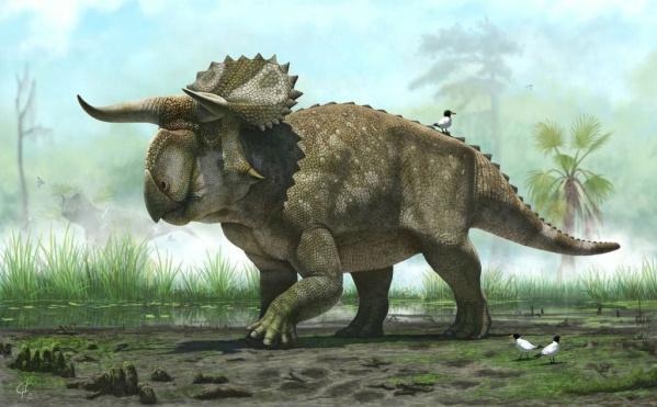 Dažiem no lielākajiem... Autors: Kapteinis Cerība Fakti par Dinozauriem 2. daļa.