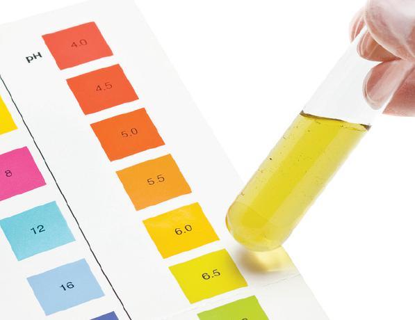 Zināms ka scaronodien urīna... Autors: Fosilija Saki, urīns labs?! - Nu paprovē! 4000 gadu p.m.ē.