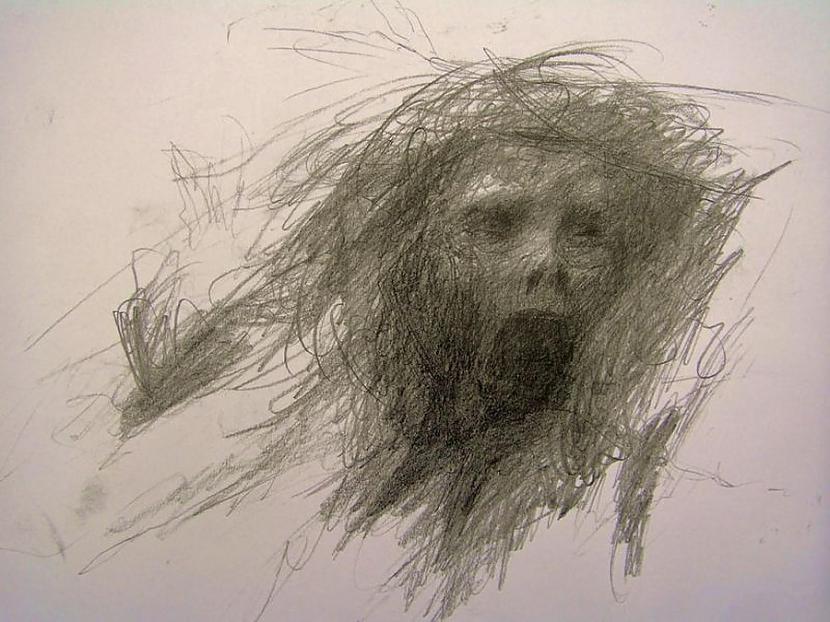 Ar šizofrēniju slima cilvēka... Autors: Fosilija Gluži kā filmās...šausmu