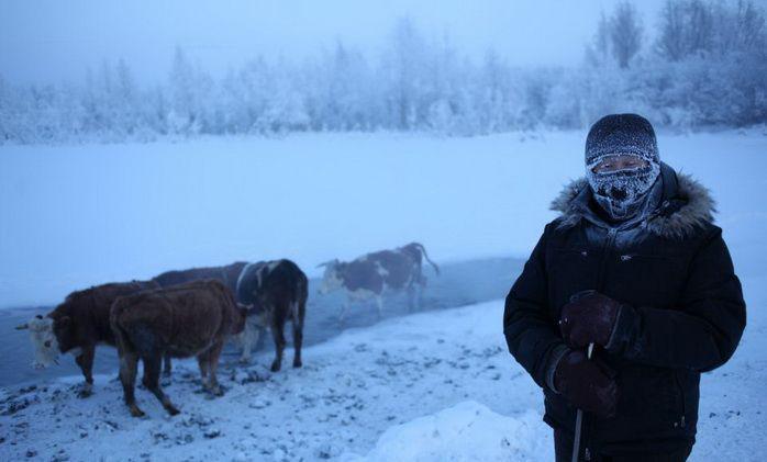 Tāpat tur ir pārāk auksts lai... Autors: Prāta Darbnīca Mūžīgā sala pilsēta - Oimjakona