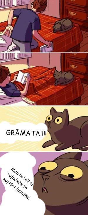 Autors: twist Kaķu loģika.