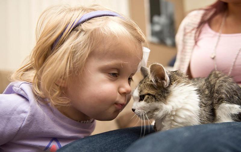 Jaunpienācējam Dokam bija... Autors: matilde Meitenīte bez rokas un kaķēns bez ķepiņas atrada viens otru un ir nešķirami!