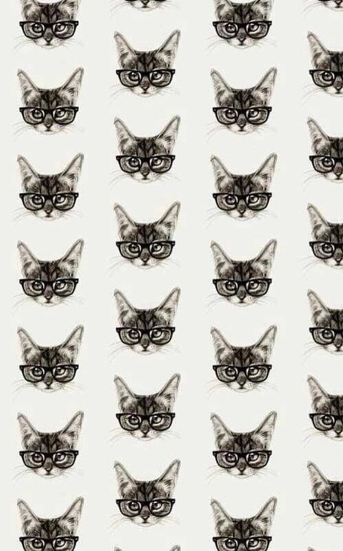 Autors: Fosilija Interesanti fakti par kaķiem