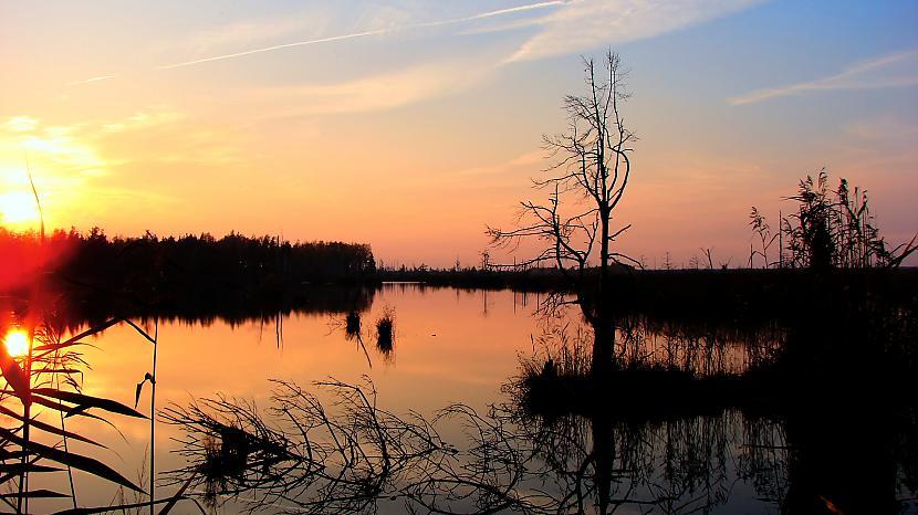 Ķemeru purvs vakarā Autors: M4R3X Pazudušās un atrastās