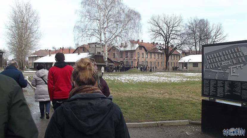 Caur visu pasauli Auscaronvice... Autors: Fosilija Es tur biju, es to redzēju - Aušvices koncentrācijas nometne Birkenau #1