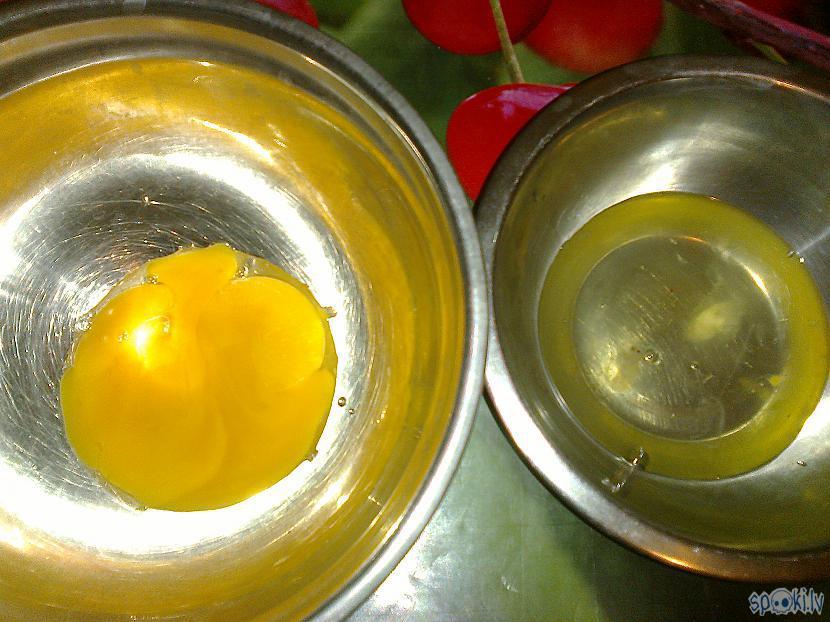 Divus olu dzeltenumus... Autors: ezkins Kā kabacīši sēnītes ierullēja