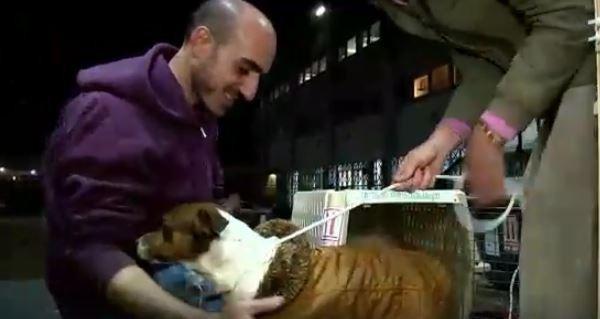 Tas bija brīdis kad Daniela... Autors: Razam4iks Viņa gribēja izglābt tikai dažus suņus, bet tad viņas plāni krasi mainījās.