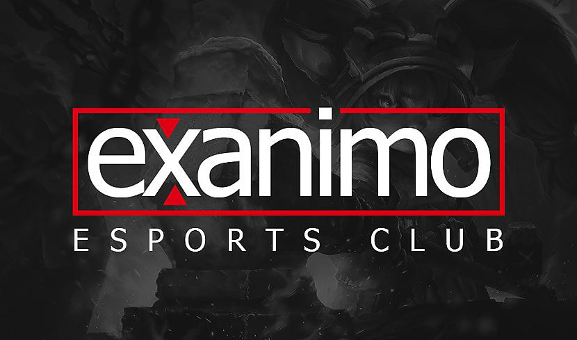 Ex animo csgo betting legal sports betting apps