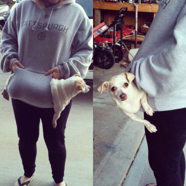 Autors: Mao Meow Pastaigā ar suni!