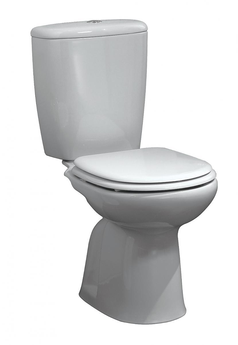 Pirmie scaronāda veida attēlā... Autors: KXoP No krūmiņiem līdz tualetei