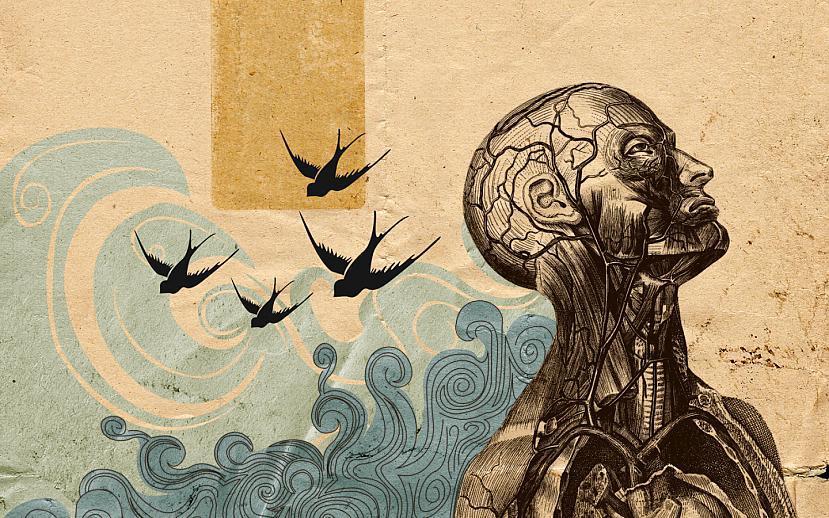 eremīts Autors: eremīts2 Uzkās, man galvā dzīvo putni