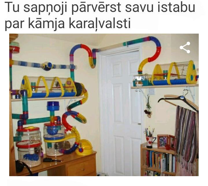 Autors: Tvītotāja Šis ir jauks attēlu stāsts par visiem, kuriem bērnībā ir bijis kāmītis. :)