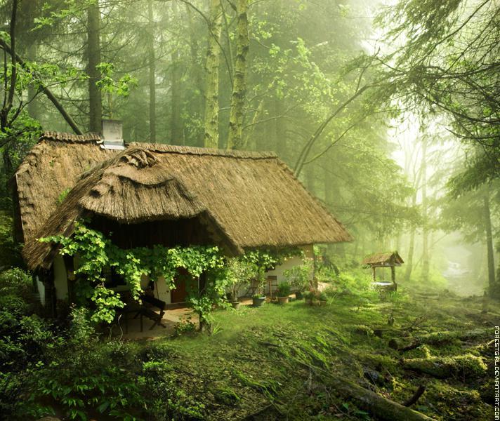Priekš mājiņas Tev būs... Autors: Ciema Sensejs Kā vienatnē izdzīvot mežā, bez telefona, elektrības un veikala paikas.