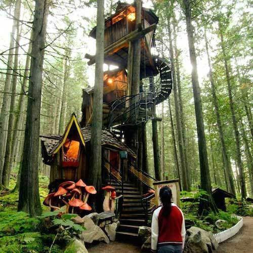 ATCERIES ja ieraugi cilvēku... Autors: Ciema Sensejs Kā vienatnē izdzīvot mežā, bez telefona, elektrības un veikala paikas.