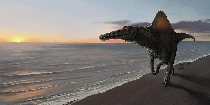 Autors: MesoHupirato Ark Survival Evolved Ep2