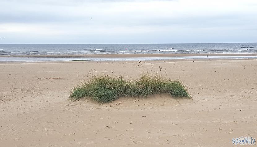 Jūra scaronodien mierīga lai... Autors: The Diāna Ar metāla detektoru pa pludmali. 04.09.2017.