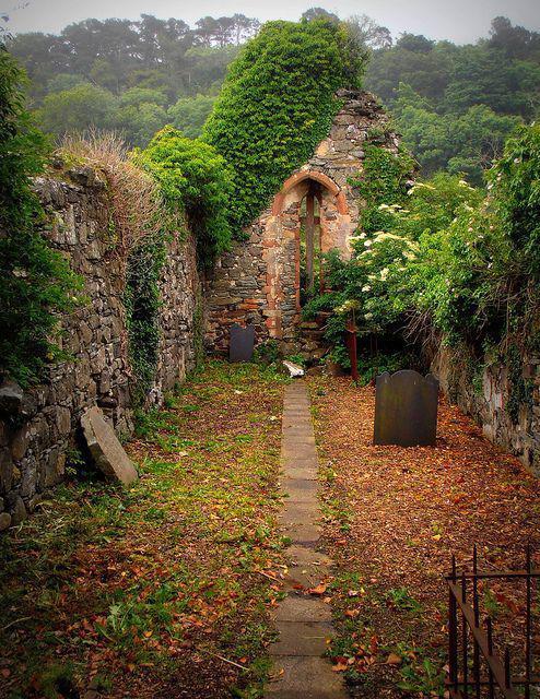 Autors: Fosilija Autumn #11