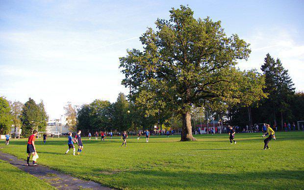 2015 gadā Eiropas koka gada... Autors: Buck112 Interesanti fakti par Igauniju