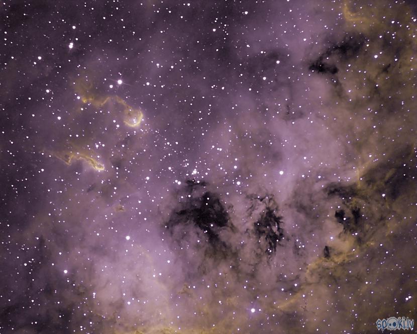 Kurkuļu miglājsekspozīcijas... Autors: peleks Astrofotografēšana