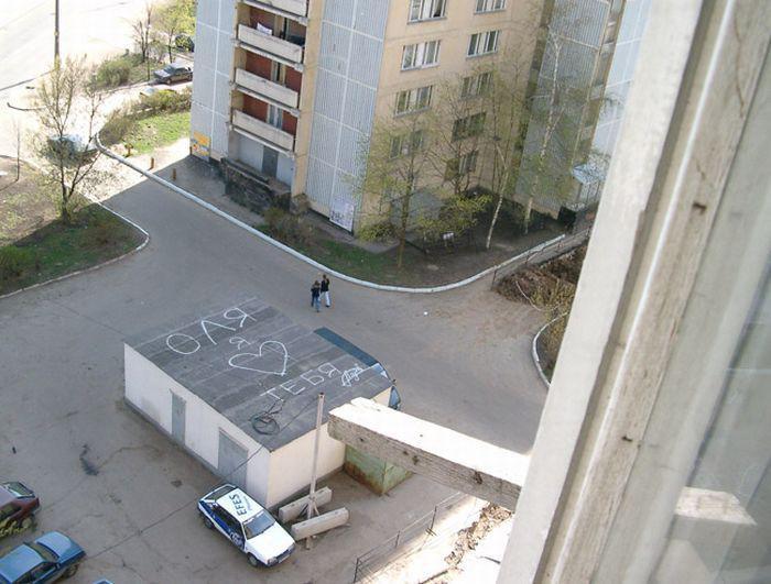 Kojās izrādīt mīlestību ir... Autors: Latvian Revenger 30 attēli, kas pierāda, ka koju dzīve ir visjautrākā lieta pasaulē