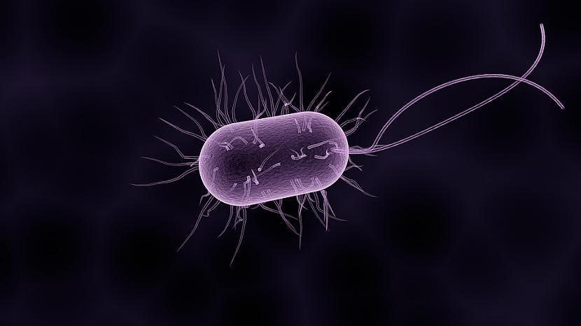 Foto PixabayVarbūt... Autors: Lestets Krievu zinātnieki brīdina par kosmosa baktēriju-mutantu