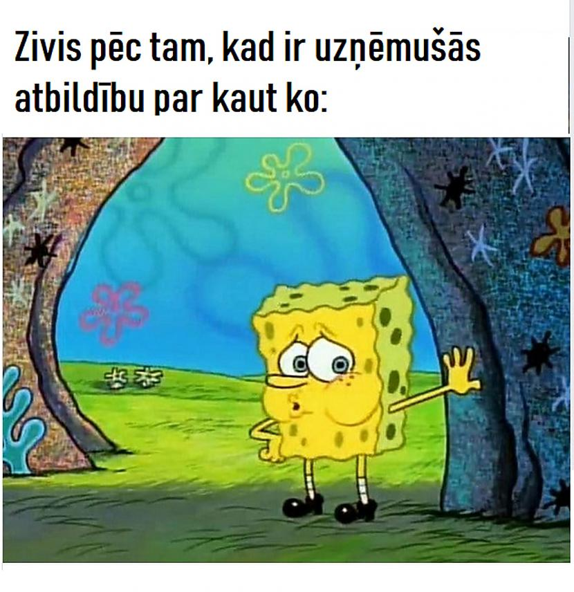 Autors: The Diāna Memes par ZIVĪM