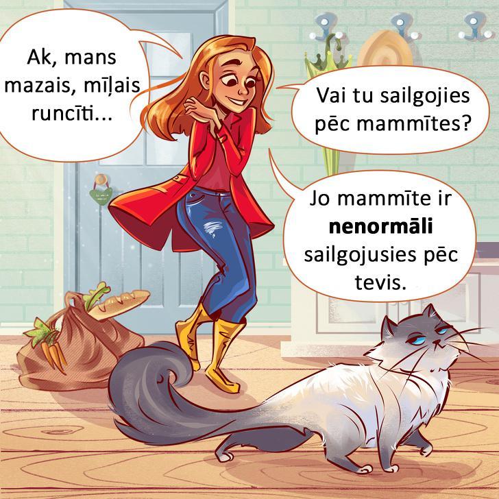 Vēl viens par sievietēm... Autors: matilde 10 tipiskas situācijas, kurās sevi var atpazīt KATRS kaķa saimnieks