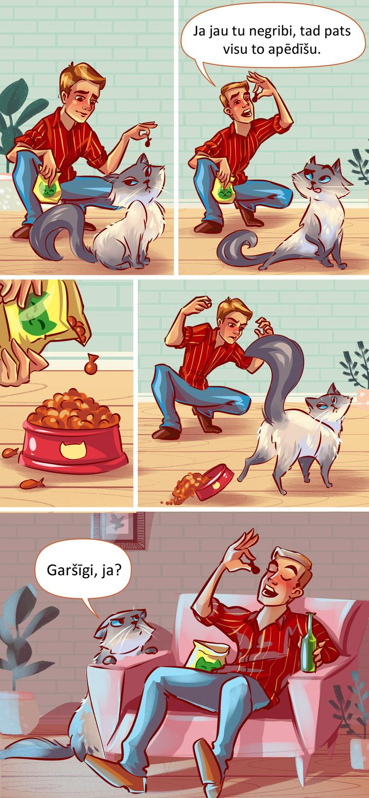 Kaķis ne vienmēr gribēs ēst... Autors: matilde 10 tipiskas situācijas, kurās sevi var atpazīt KATRS kaķa saimnieks