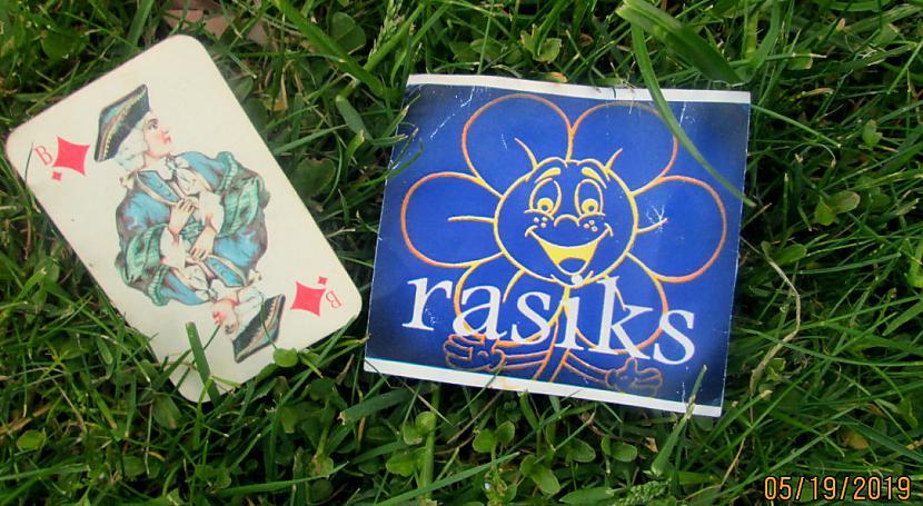 Autors: rasiks FS zaļa zāle un spēļu kārts.