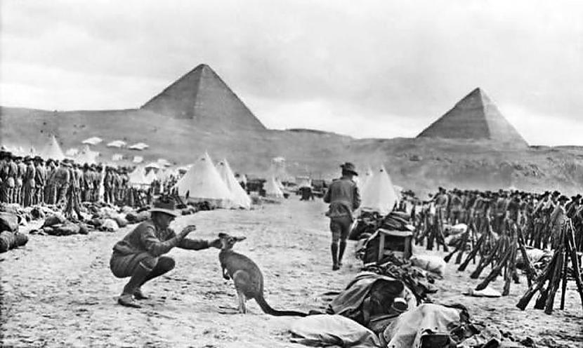 Ķenguri Ēģiptē Tas nonāca tur... Autors: Lestets Vēsturiskas bildes, kurām vajag paskaidrojumu