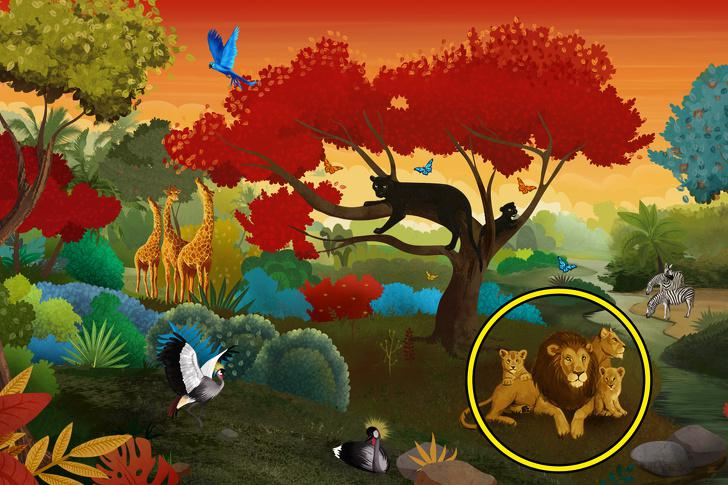 LauvasJa ieraudzīji lauvas tad... Autors: Lestets Psiholoģisks tests: Ko tu ieraudzīsi pirmo?