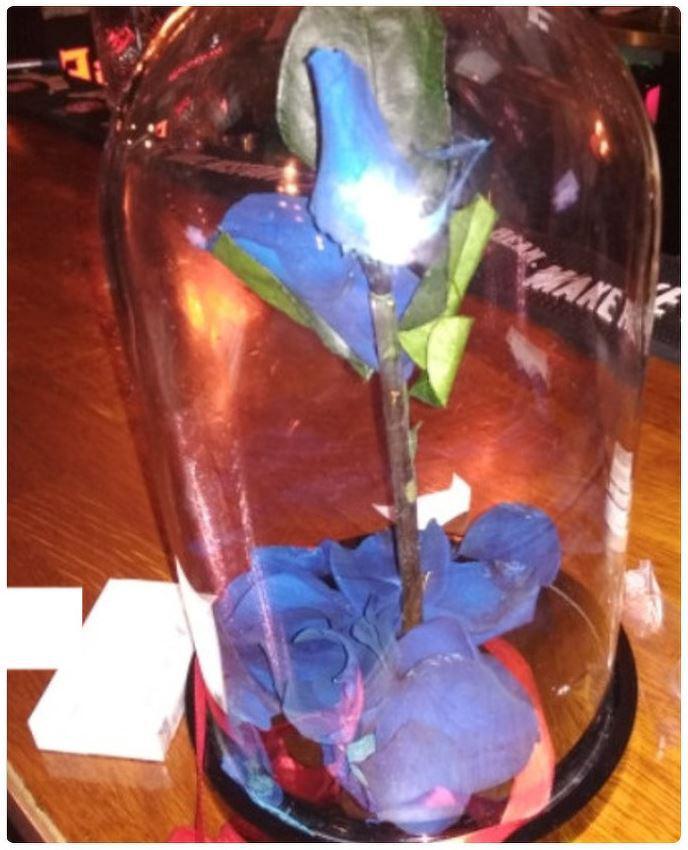 Roze kolbāTas gan vairāk... Autors: Lestets 12 dāvanas, ko nevajadzētu dāvināt sievietēm 8. martā