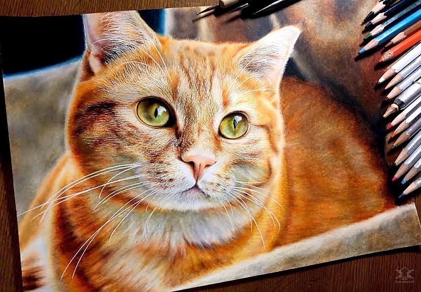 Autors: Fosilija Zīmuļu zīmējumi ar dzīvniekiem, kurus nevar atšķirt no reāliem