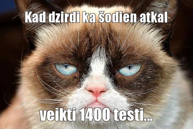 Autors: Ilmars Ivara Dēls Memes
