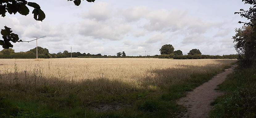 Pastaigu takas ap laukiem... Autors: Griffith Rudens lauku takās, Malvern UK, 12/09/2020 1/2.