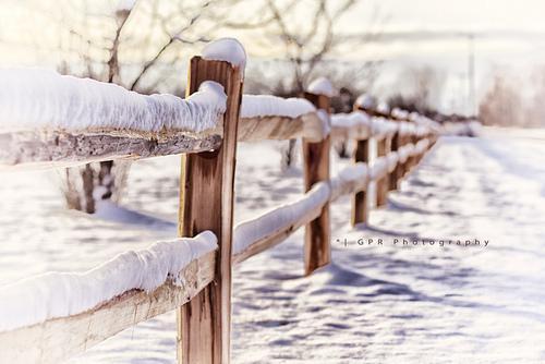 Autors: fancyvitaminsea Waiting for Christmas