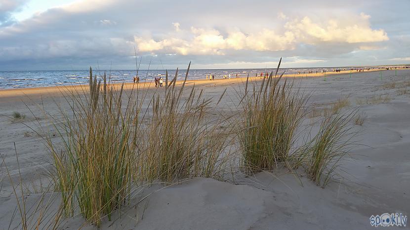 Autors: pyrathe Ar metāla detektoru pa pludmali 2020 (ziemas (ne)sezona)