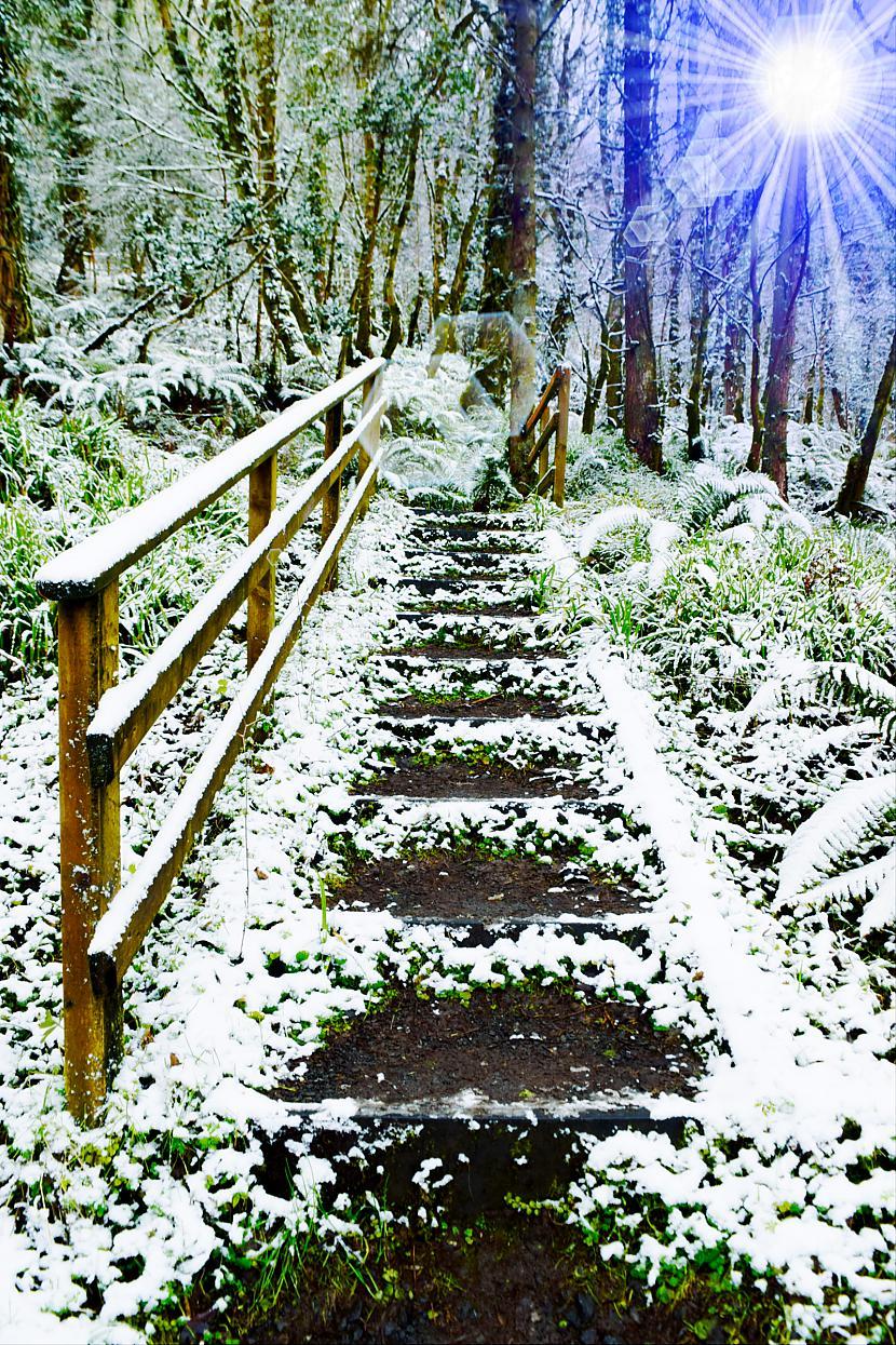 Autors: Strāvonis Nedaudz sniega