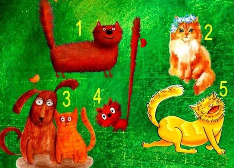 Pirmais kaķisTu kļūsi... Autors: Zibenzellis69 Kaķīšu tests. Kā tevi mainīs šis pavasaris?